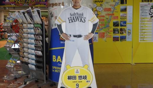 宮崎空港がアツすぎる!!プロ野球ロスの私には天国でした♡【宮崎キャンプへいってきた①】