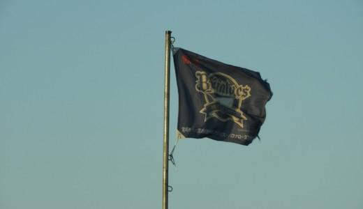 宮崎の街はプロ野球球団旗がはためく・・・2月の宮崎は車に乗っていても忙しい!【宮崎キャンプへいってきた③】