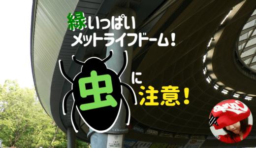【虫に注意!】緑いっぱい埼玉メットライフドーム。実際にいた虫は