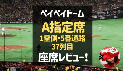 ヤフオクドーム【1塁側・A指定席(5番通路・37列】試合の見え方レビュー!
